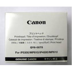 QY6-0075 Tête d'impression pour imprimante Canon ip4500 / ip5300 / MP810 / MP610 / MX850